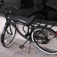 Miami Beach, FL - Bicycle Struck by Tesla at S Venetian Way & NE 13th Pl